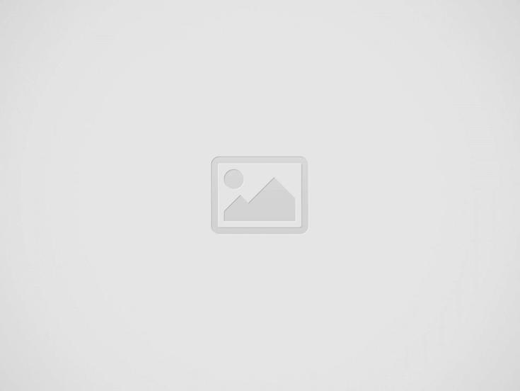 Barbie Ford Mustang: Spielzeug Auto mit Motorrad Antrieb