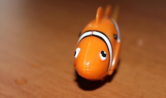 Das ist er - der kleine Robo Fish. (Foto: GamingGadgets.de)