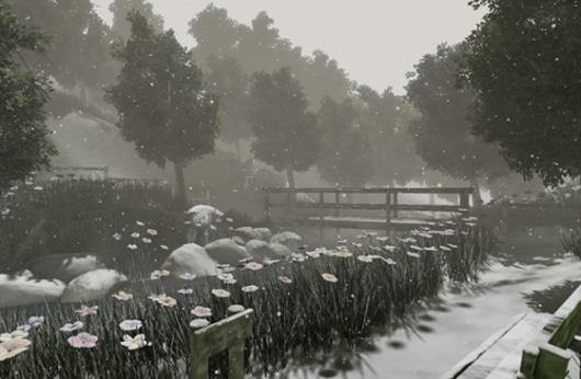 Wechselnde Jahreszeiten und mehr gibt's in diesem Wald. (Foto: pozible.com)