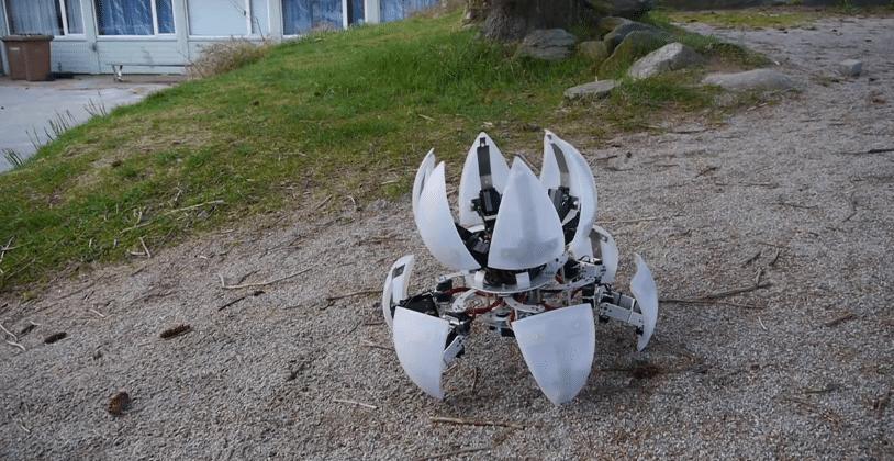 MorpHex MK II in der Natur. (Foto: Youtube)