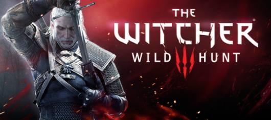 Als CE und als Standard-Edition kommt The Witcher 3. (Foto: Bandai Namco)