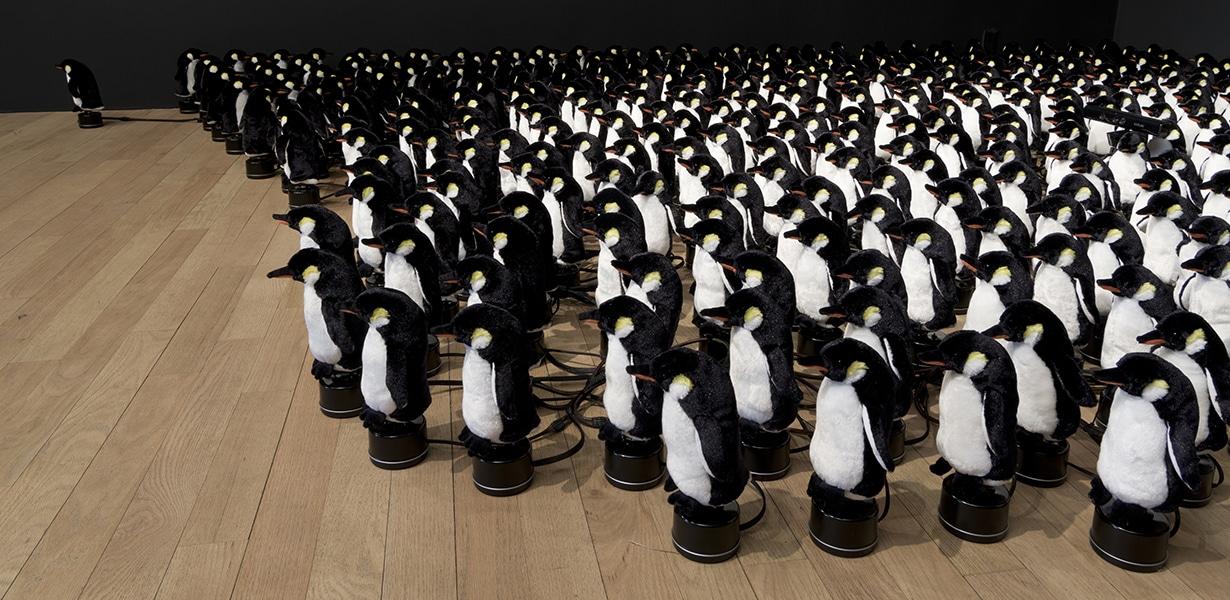 450 Pinguine gehorchen euch. (Foto: bitforms gallery)