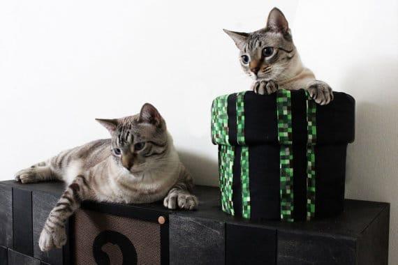 Awwww! Süße Katzen. (Foto: Etsy)