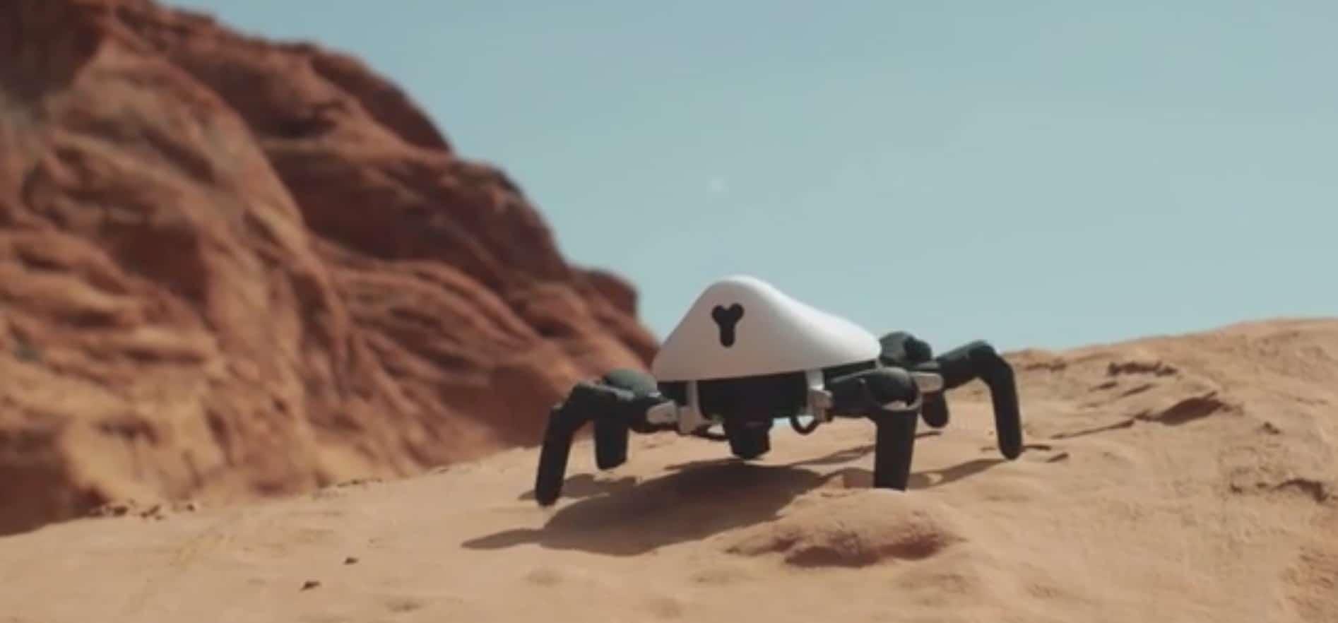 Hexa: Roboter-Spinne zum Spielen und Programmieren
