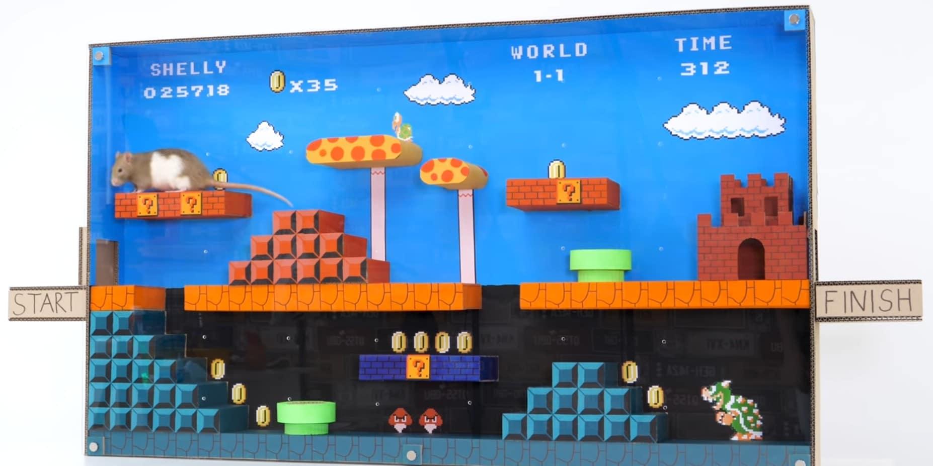 Super Mario Bros.: Geniales Labyrinth für eine…Ratte!?