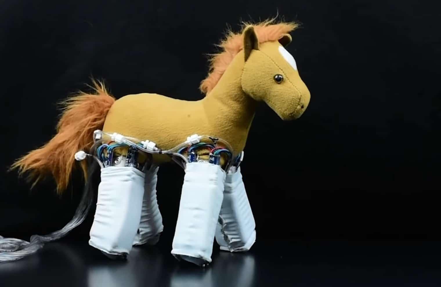 Das Pferd lernt laufen. (Foto: Yale University)