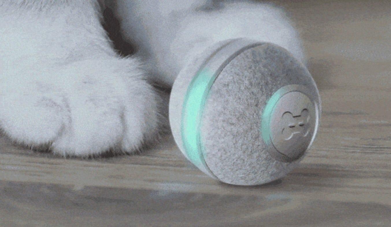 Das ist ein kleiner, unscheinbarer Ball, der Katzen bespaßen möchte. (Foto: Cheerble)